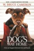 a-dog-s-way-home.jpg.pagespeed.ce.Bb9YgYj-mq
